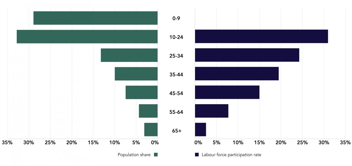 Pakistan Labour Force Participation Rate by Age, 2014